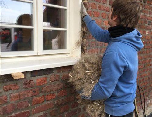 Neue Fenster für denkmalgeschützten Bauernhof